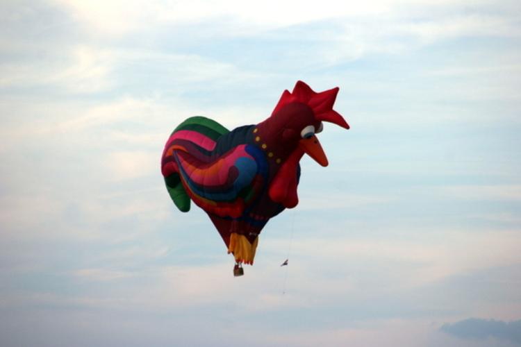 Air Ballon 2015 (3)