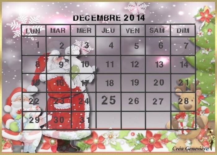 Coups de Coeur de Novembre 2014
