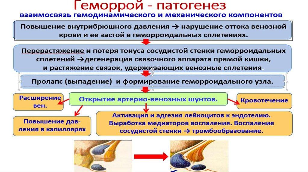 Повышение лейкоцитов при геморрое