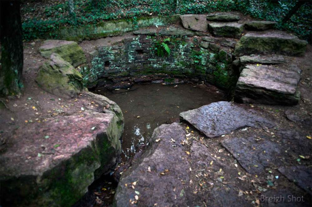 Brocéliande : La fontaine de Jouvence