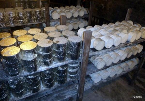 P06 - Des fromages