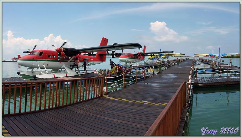Les hydravions prennent le relais des vols internationaux - Malé - Maldives