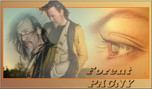 Florent PAGNY 003