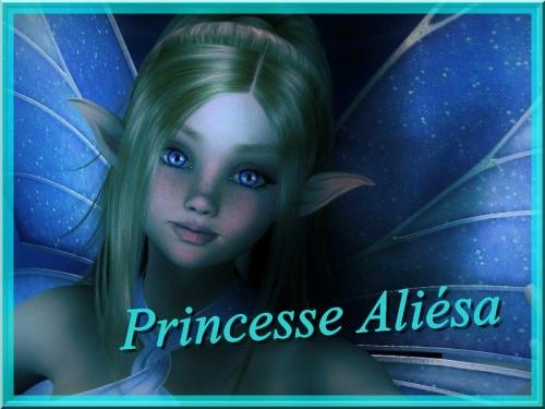 cadeau pour princesse aliésa