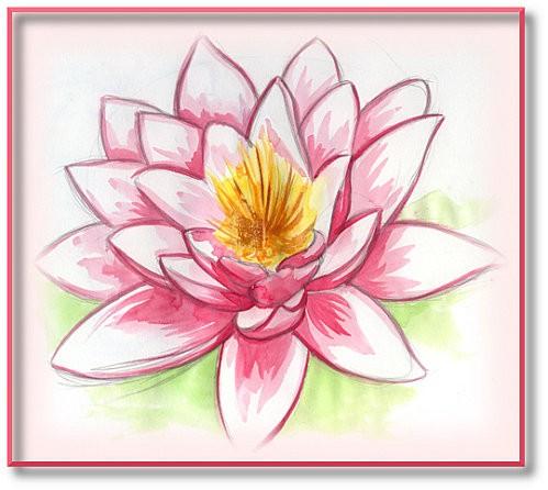 fleur-de-lotus.jpg