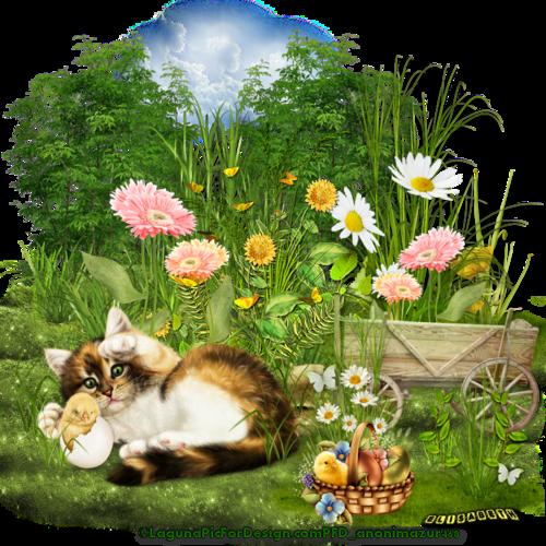 Tuto Spring 4 de Colorweb