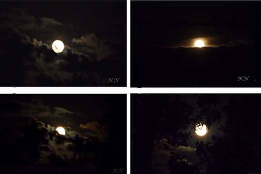 Soirs de lune en Haïsha