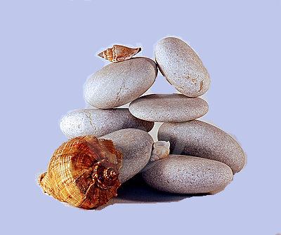 PIERRES et GRILLAGE=pedras e grilagem