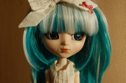 GARENCE - PULLIP MERL