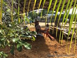 Suriname / Fin de l'escale