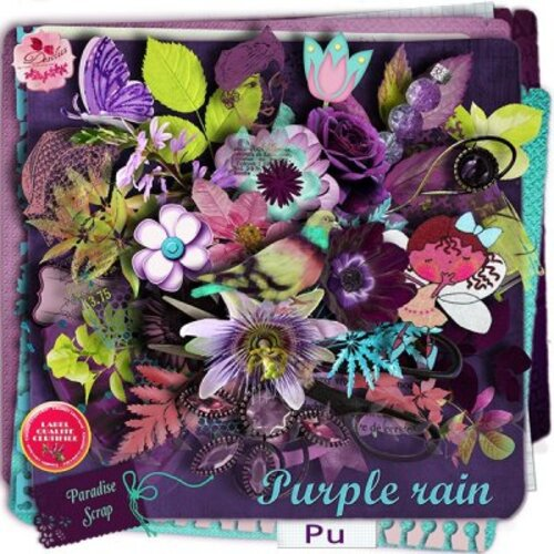 KIT PURPLE RAIN DE DESCLICS