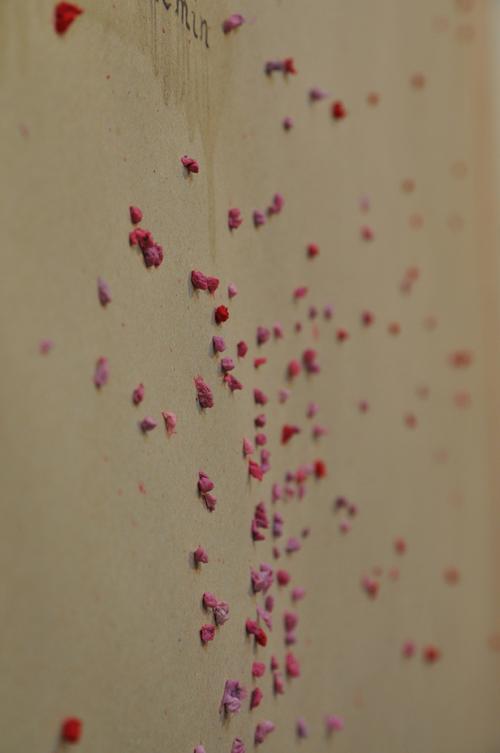 les 17 © Delphine Soustelle Truchi