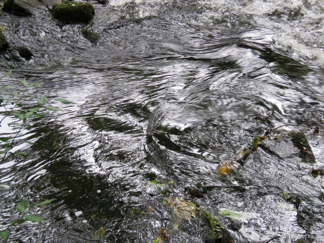reflets sur retenue d'eau