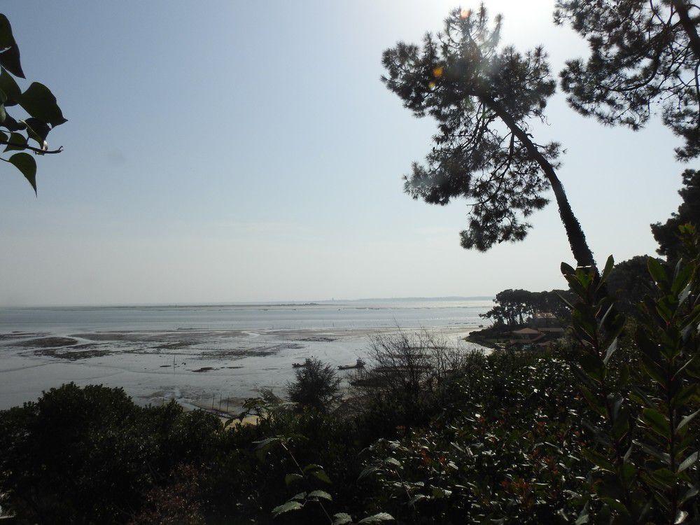 Balade sur la dune de la Pointe aux Chevaux...
