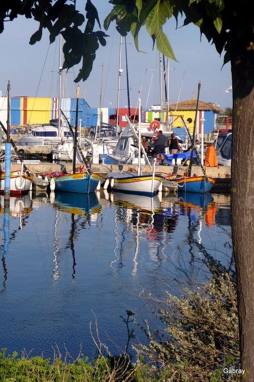 Des reflets au port du Barcarès