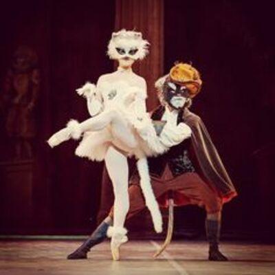 dance ballet the cats beauty ballet
