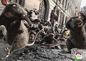 Rats - dulcolaxrats