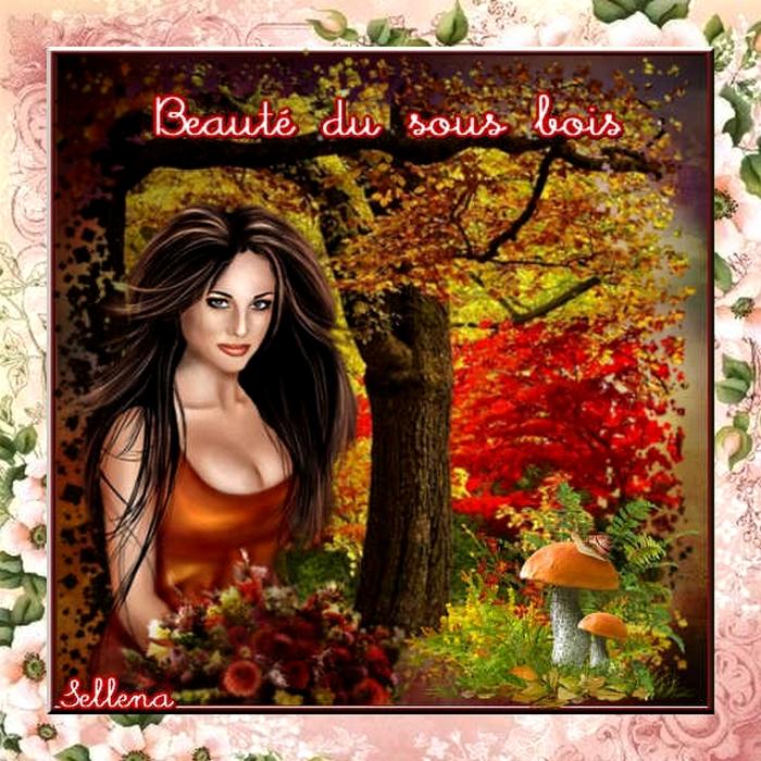 **La Forêt en Automne**Cartes