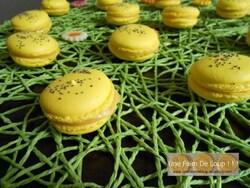 Macarons chocolat blanc / speculoos