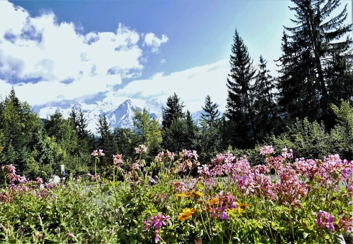 Bonjour.... Pays du Mont Blanc