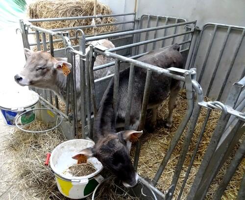 Portes ouvertes 2013 au lycée agricole de la Barotte à Châtillon sur Seine