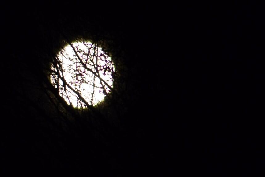 Haïku à la lune