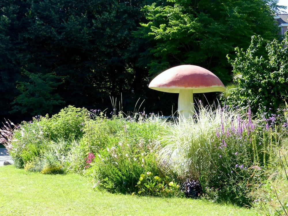 Fin juin, dans le Jardin des Plantes