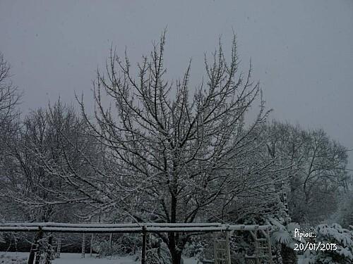 neige-20-janv-2013--4-.jpg