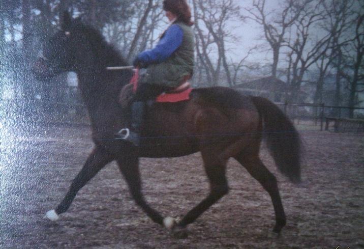 C'était un cheval merveilleux ...