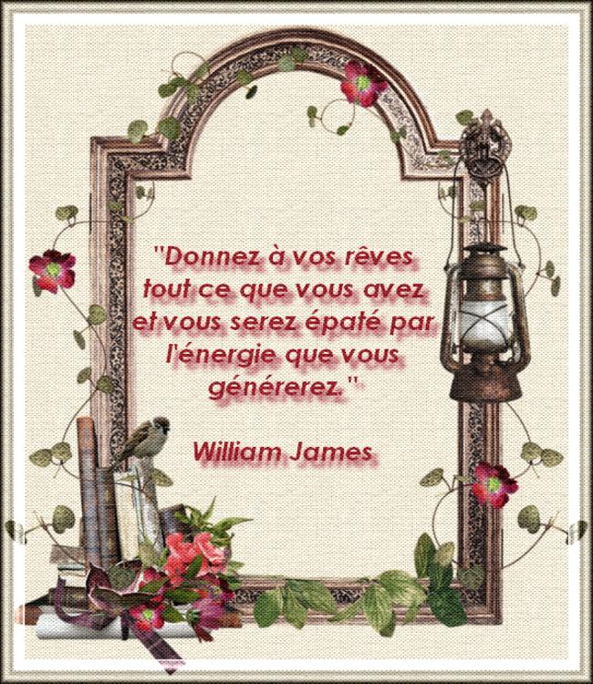 Citation de William James - Persévérance et Volonté