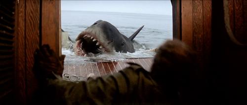 JAWS LES DENTS DE LA MER