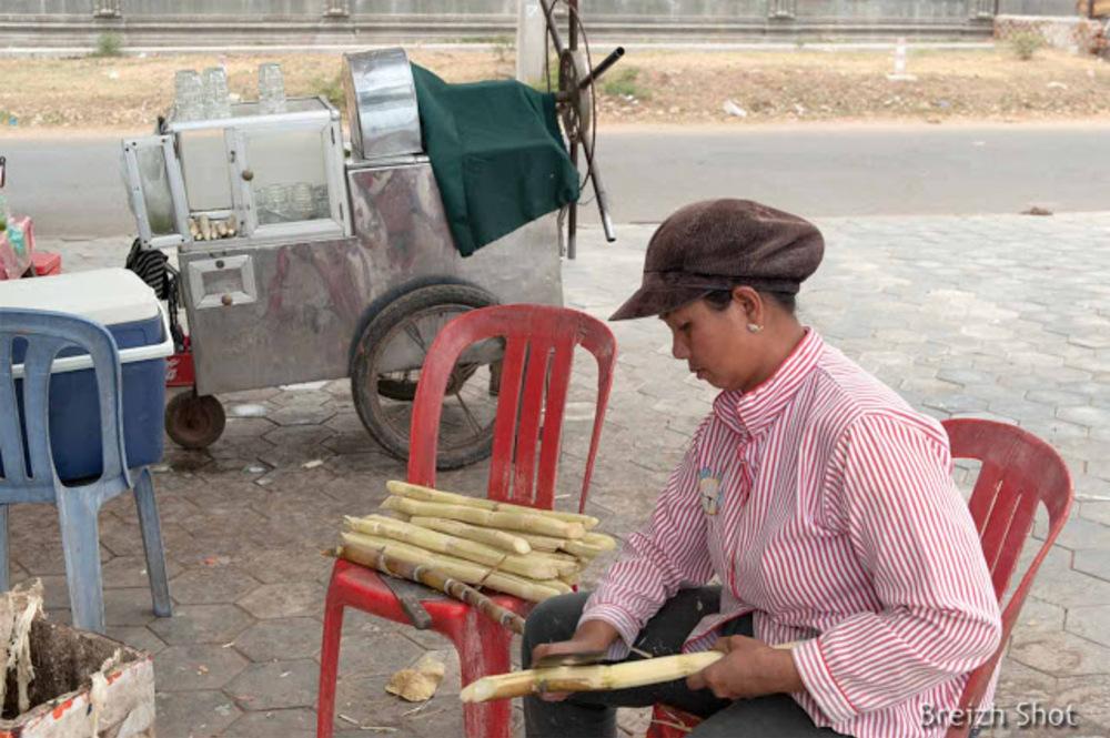 Bâtons de canne à sucre : Pressoir à jus de canne