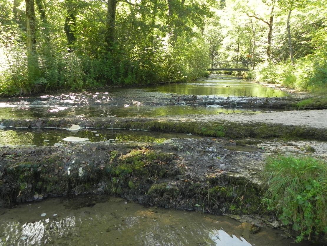 photos du Hérisson dans le Jura