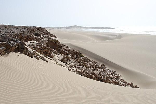 Boa Vista, l'île aux dunes11