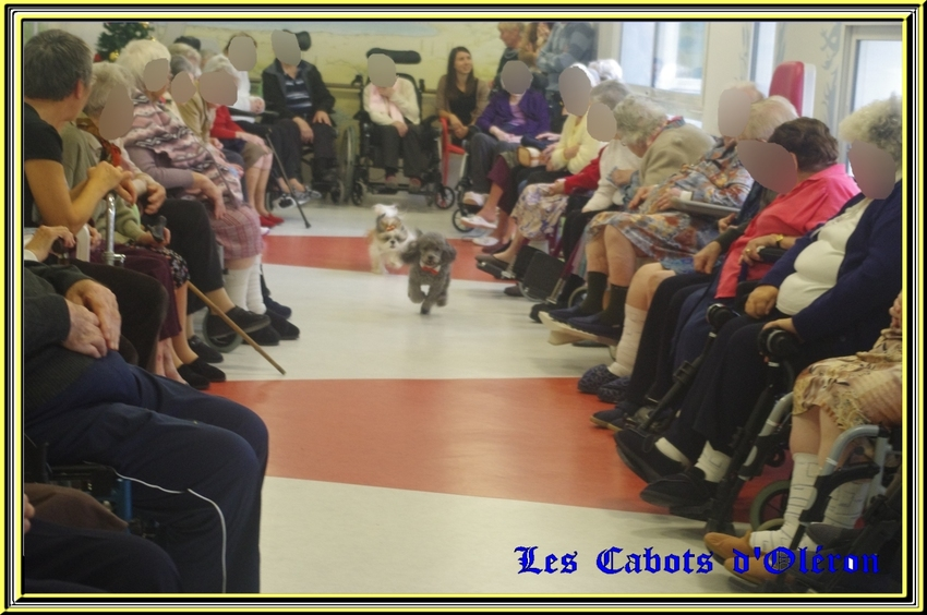 Animation à la maison de retraite de St Pierre d'Oléron le 12 décembre 2014