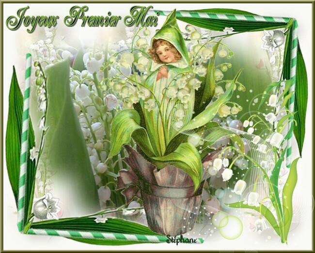 venez sentir ce doux parfum de printemps !