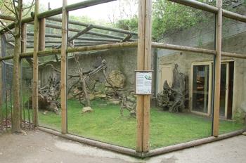 Zoo Osnabruck d50 2012 017