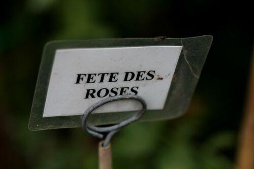 Pépinières Foucart - Juin 2014 (1/...)