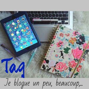 [Tag] Je blogue un peu, beaucoup, ...