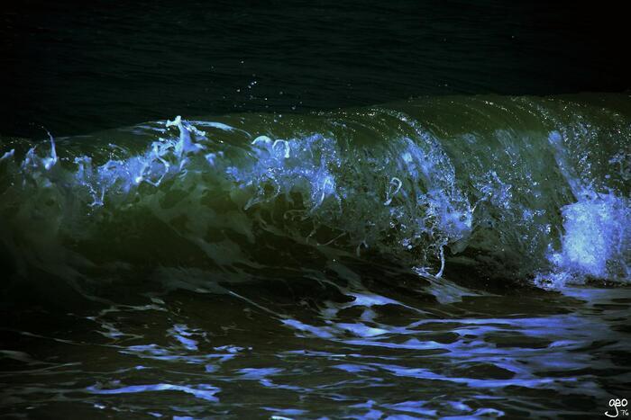 Voilier dans la vague...!