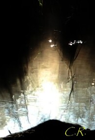 Les phénomènes lumineux