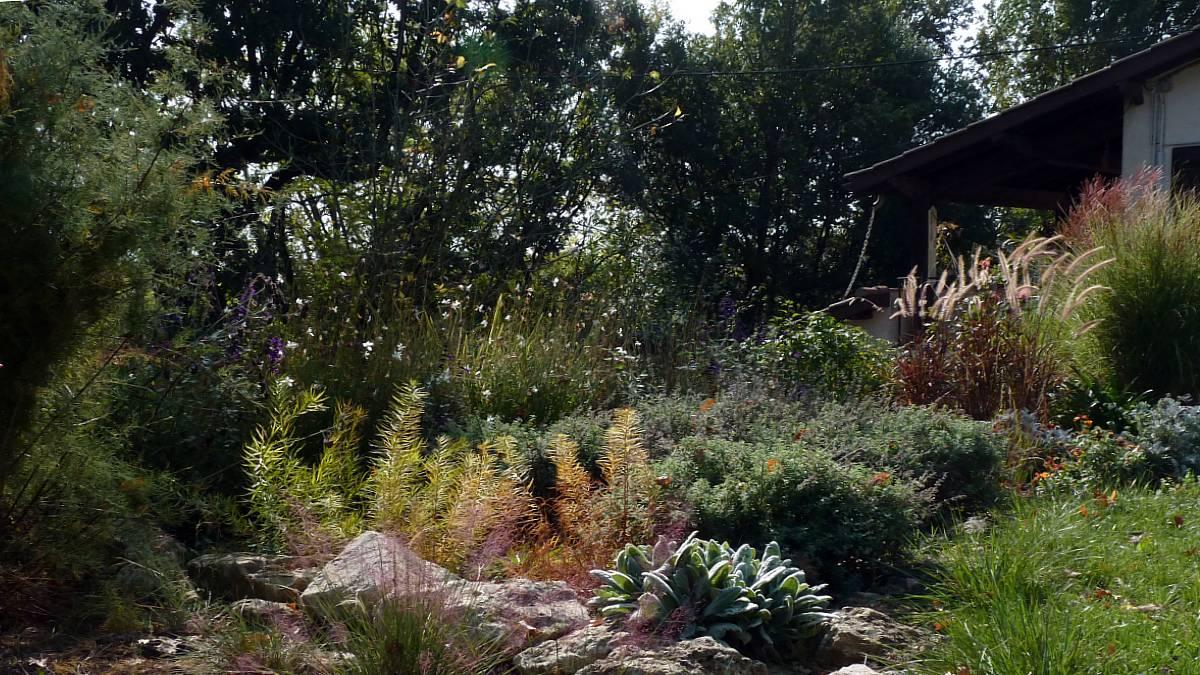 Au jardin de Marithé semaine 42/2013