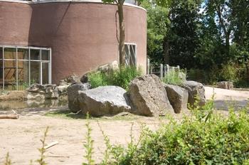Zoo Duisburg 2012 852