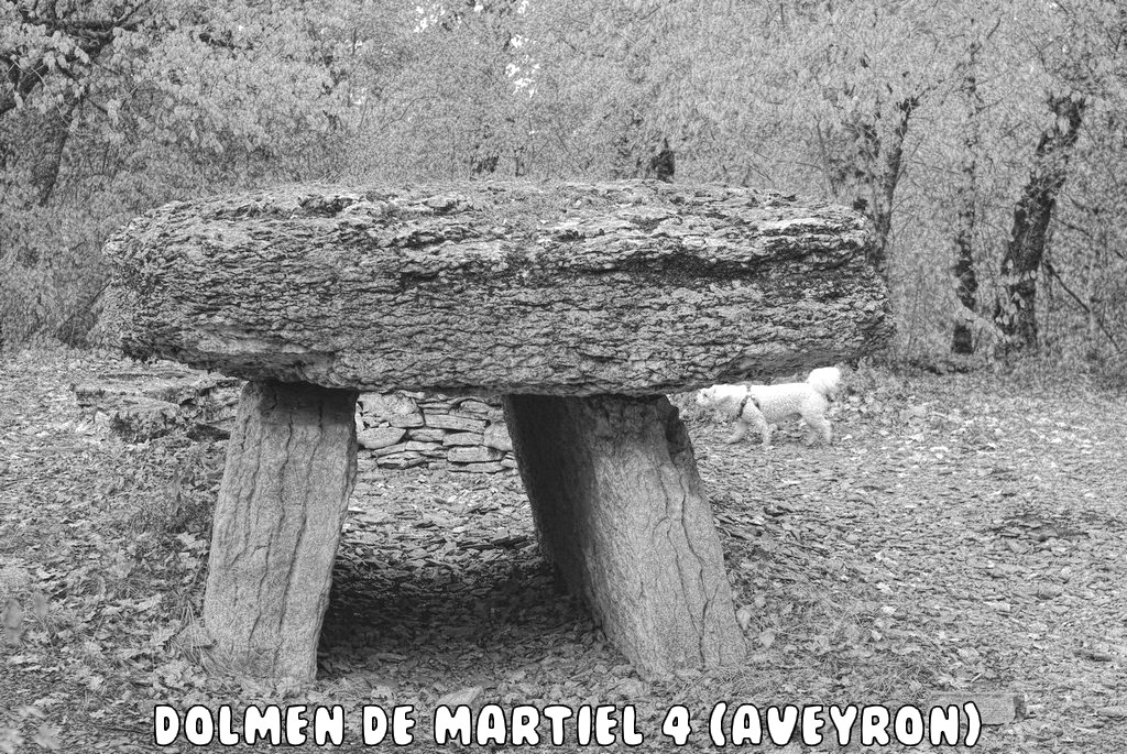 DOLMEN DE MARTIEL 3 (AVEYRON)