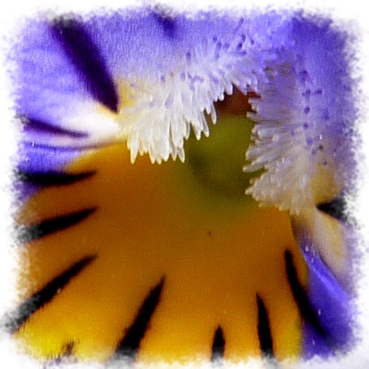 Méditations-090418