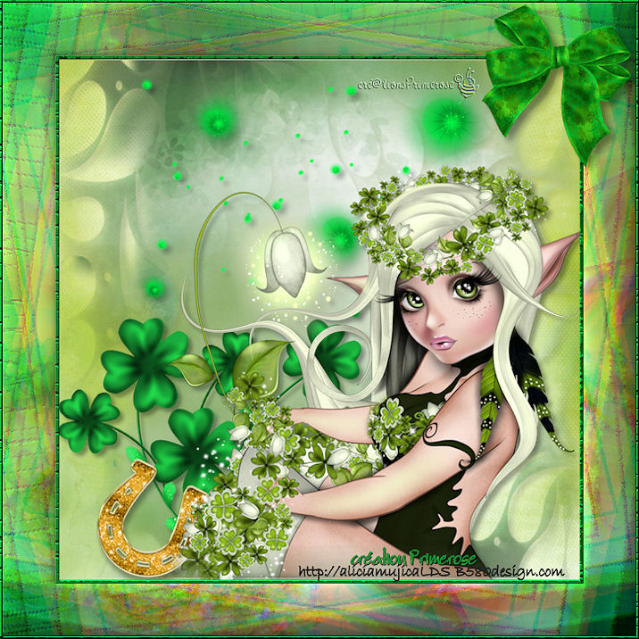 Vive St Patrick