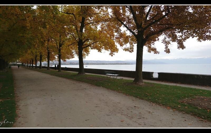 Morges au bord du lac
