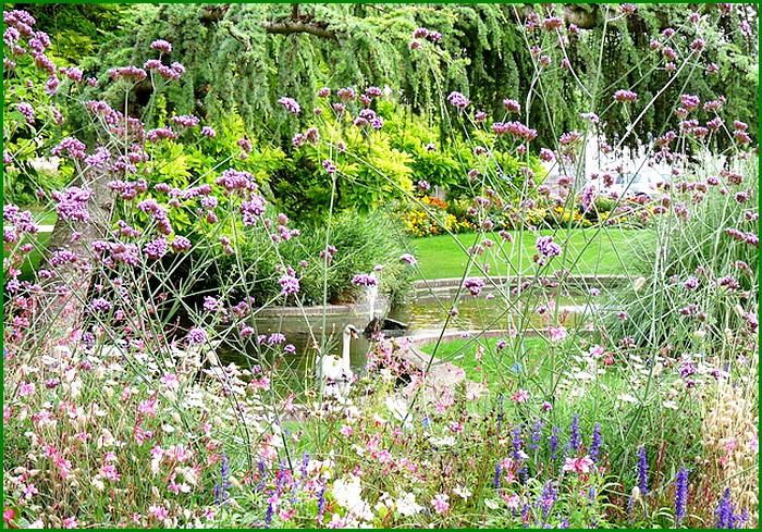 Un jardin à Abbeville