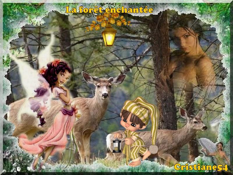 Défi pour mon amie Marjolaine ( La forêt enchantée )