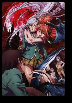 Animé : Rosario + Vampire